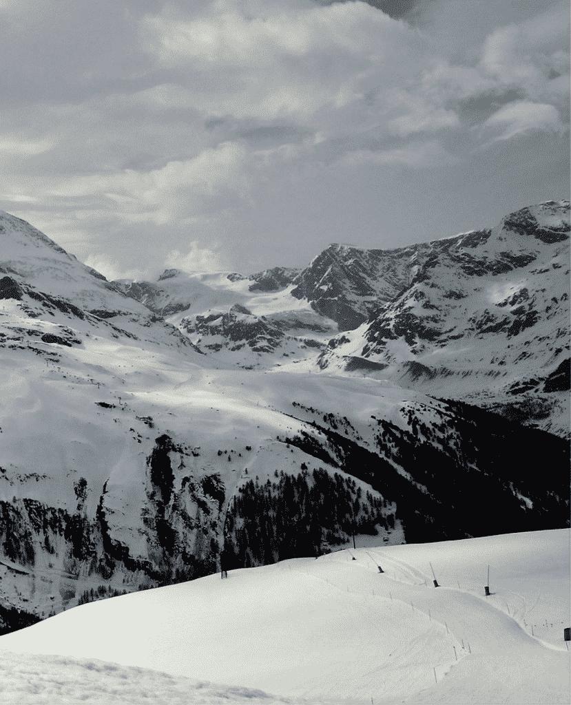 aus der Schweiz für die Schweiz